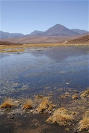 Altiplano Lakes