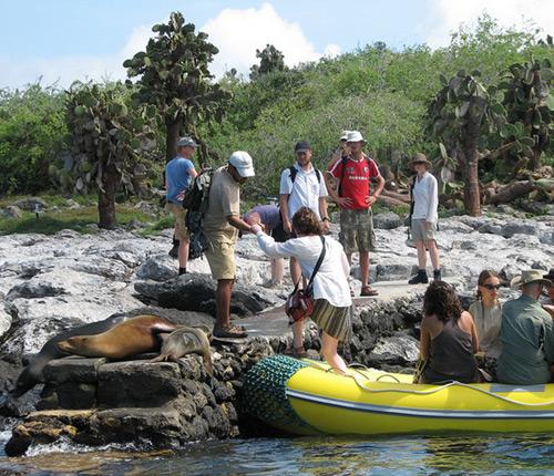 Example Galapagos dry landing