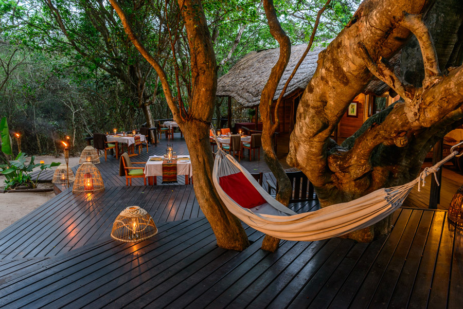 Kosi Forest Lodge Holiday Accommodation In South Africa