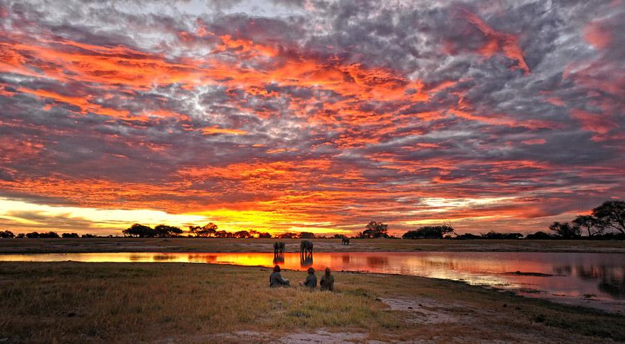 Scenic Wonders Of Kafue Amp Hwange Zambia Wildlife Holiday