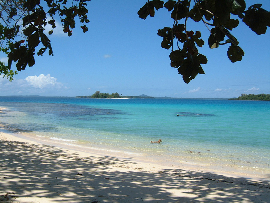 Lissenung Island Resort Holiday Accommodation In Papua New
