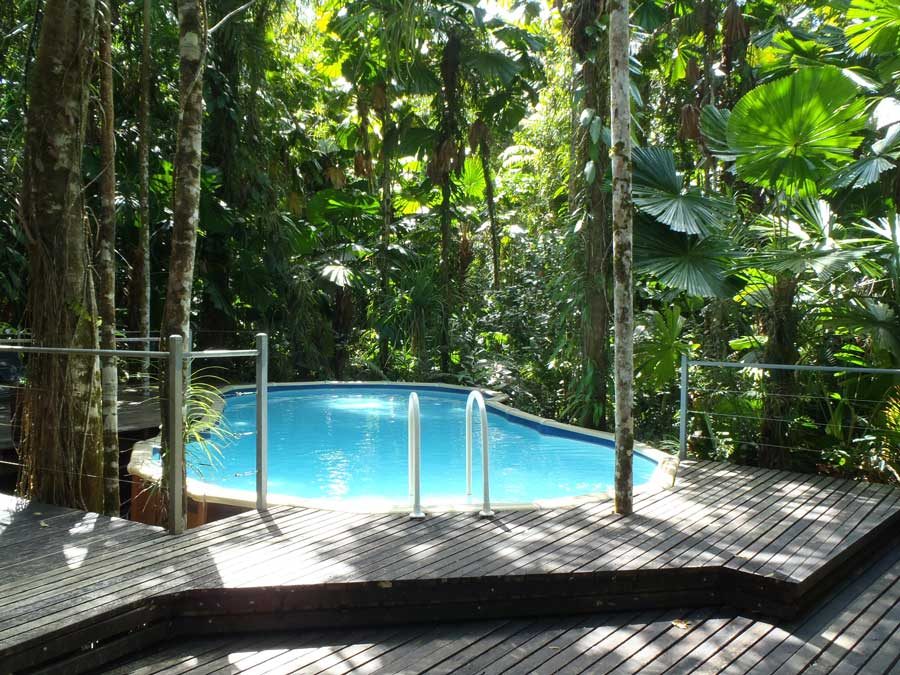 Daintree Wilderness Lodge Holiday Accommodation In