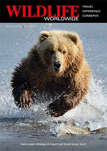 Wildlife Worldwide brochure
