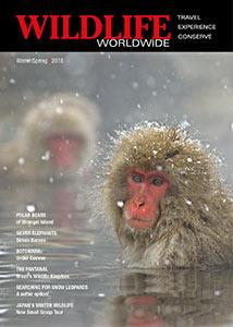 Latest Wildlife Worldwide Worldwide brochure cover